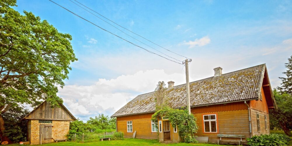 Our Top Tips For A More Eco Friendly Home
